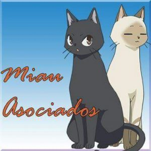 Miau Asociados