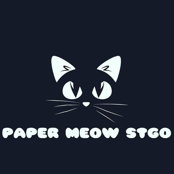 Paper Meow Stgo